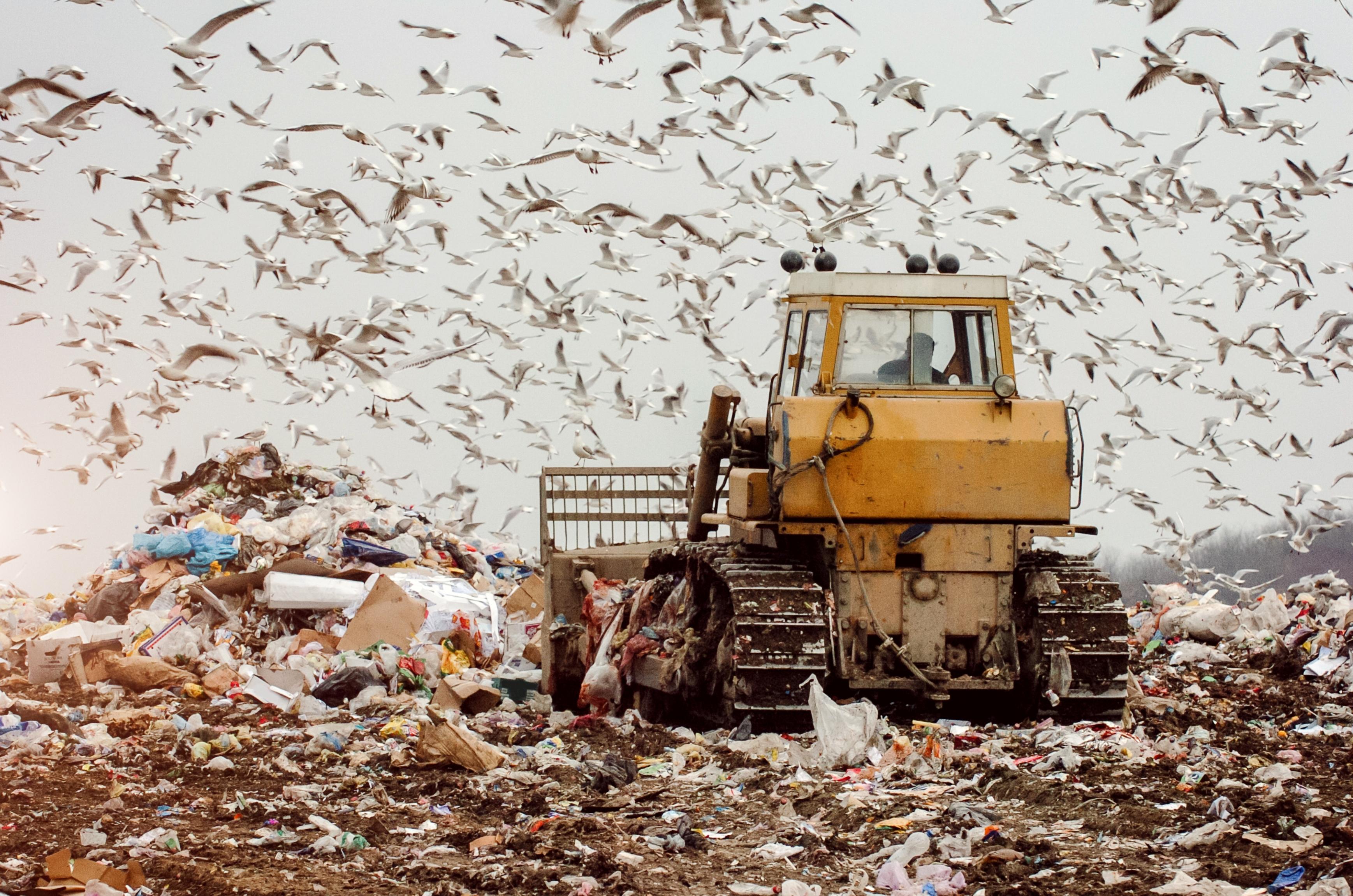 EU Europa Nachrichten Recycling Abfall Deponie