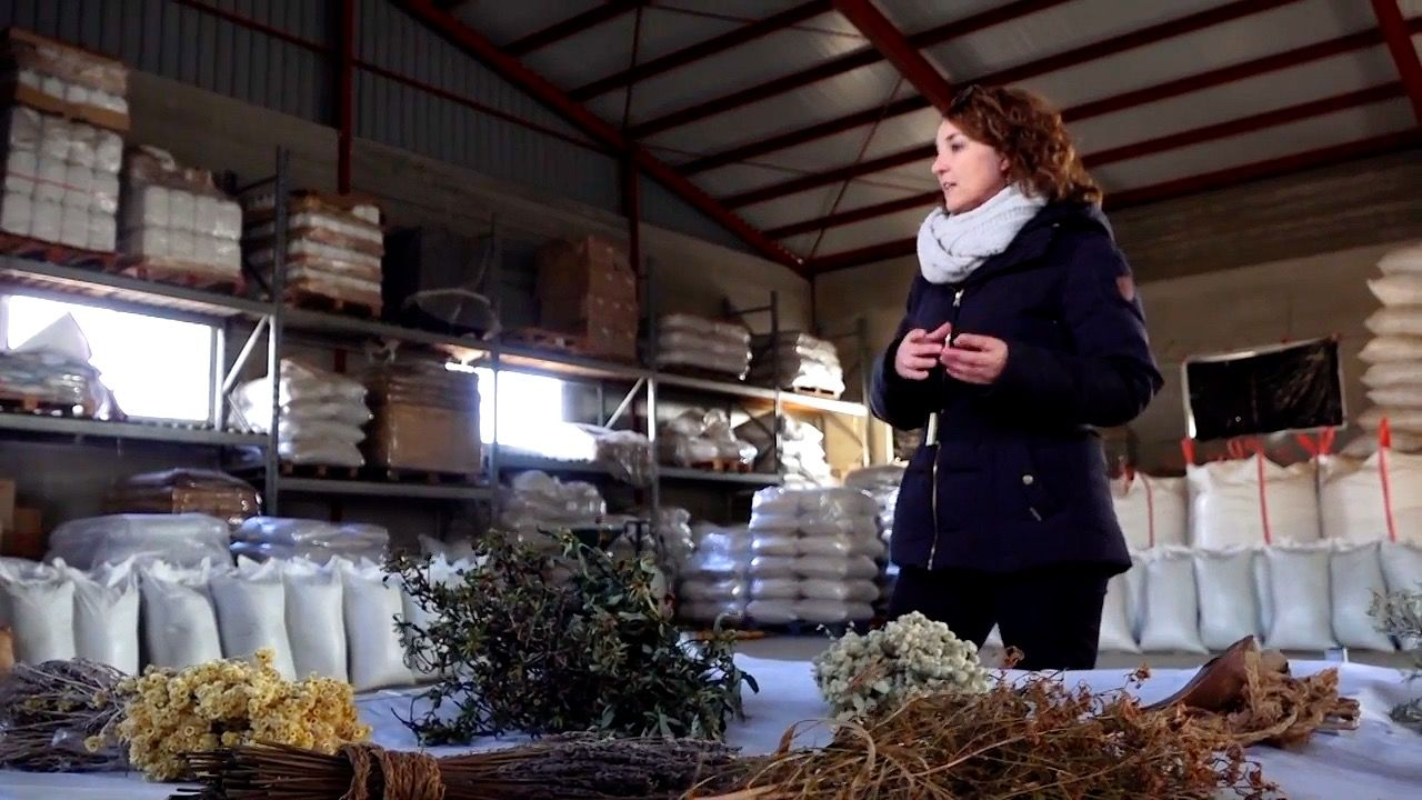 The collection of the organic waste on the market of Vinocanchón by the municipal workers