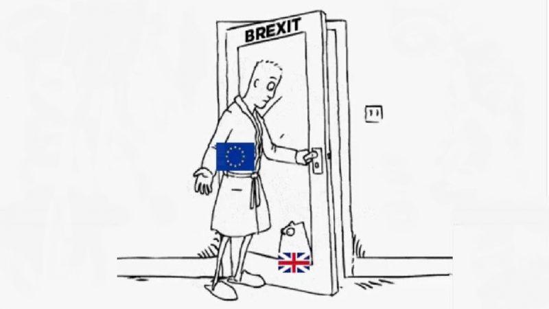 Die britische Katze -