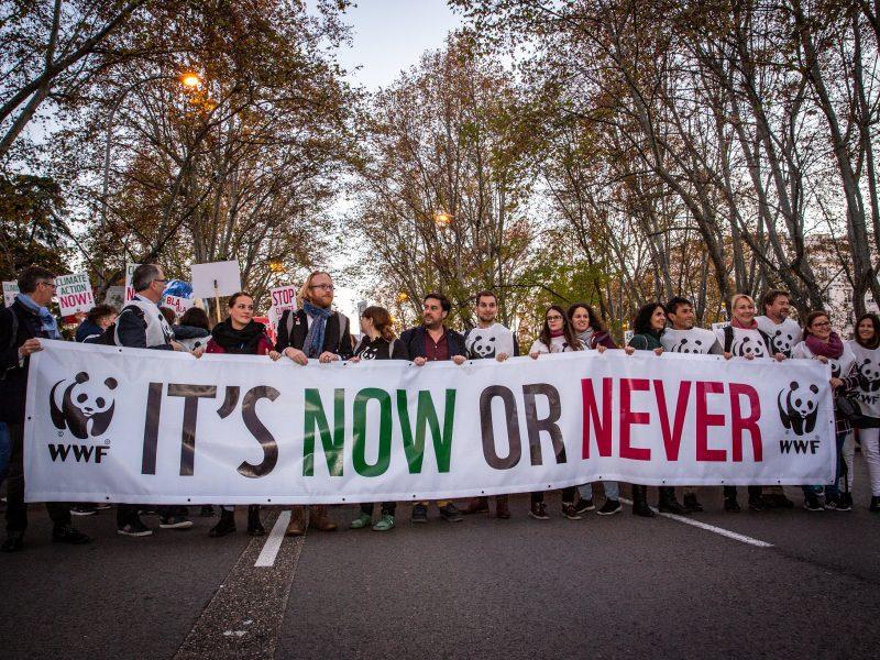 Klima Demo COP25