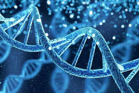 Gentechnik: Gefahr für die Biodiversität oder das Mittel der Zukunft?