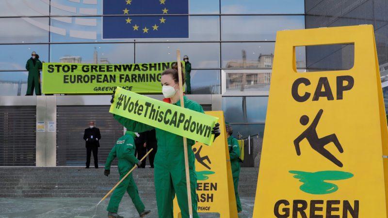 Greenpeace Aktivisten in Brüssel